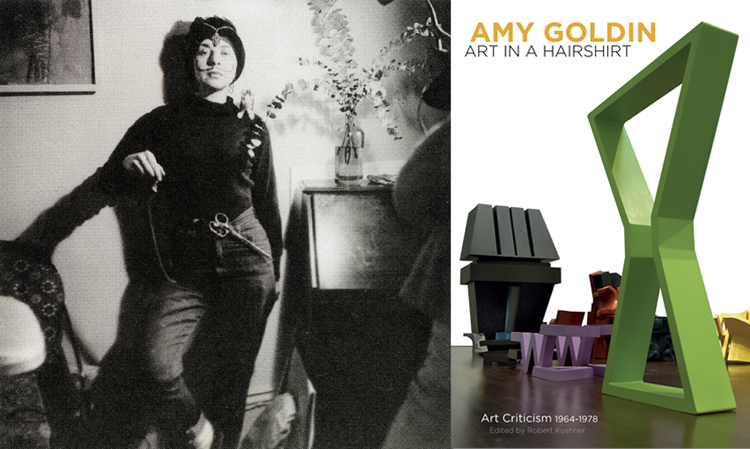 Amy Goldin Art in a Hairshirt Art Criticism 1964-1978